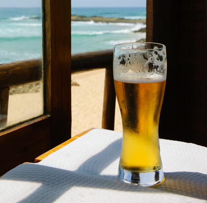 <strong>BILLIG ØL:</strong> Du kan drikke lokal øl for 7 kroner flaska i Bulgaria. Til sammenlikning koster en 0,33 l. flaske lokalt øl hele 109 kroner i Dubai! Foto: Shutterstock/NTB Scanpix