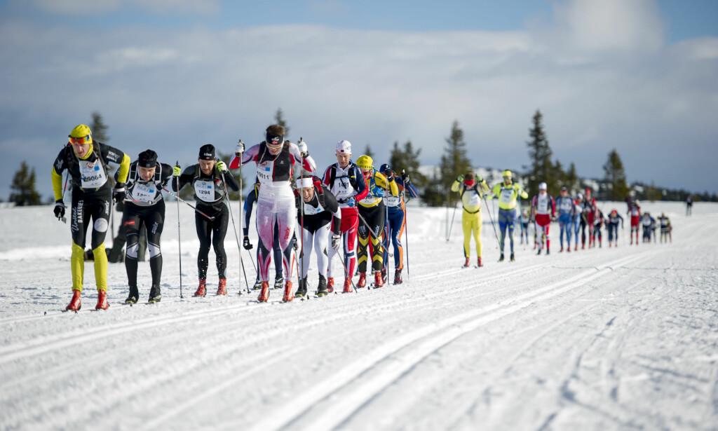 KALDE MIL: Birkebeinerrennet starter klokka 07.45. Det blir 5,4 kalde mil for løperne. Dette bildet er fra 2016. Foto: Jon Olav Nesvold / NTB scanpix