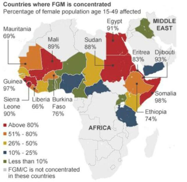 OMFATTENDE: I disse afrikanske landene er det vanlig med omskjæring av jenter. FGM står for «Female genital mutilation», kvinnelig kjønnslemlestelse. Grafikk (fra 2014): UNICEF