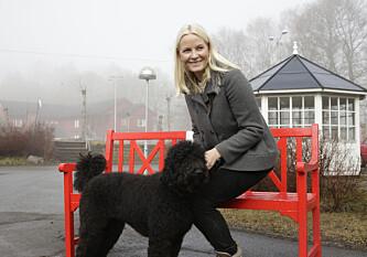 Hunden til kronprinsfamilien er forsvunnet