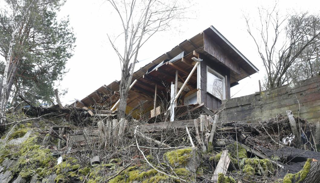 Nesøya-mann sier han hadde rett til å kappe naboens uthus i to