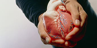 image: Legen sa først gallestein, så fikk tenåringen nytt hjerte på neste sykehus