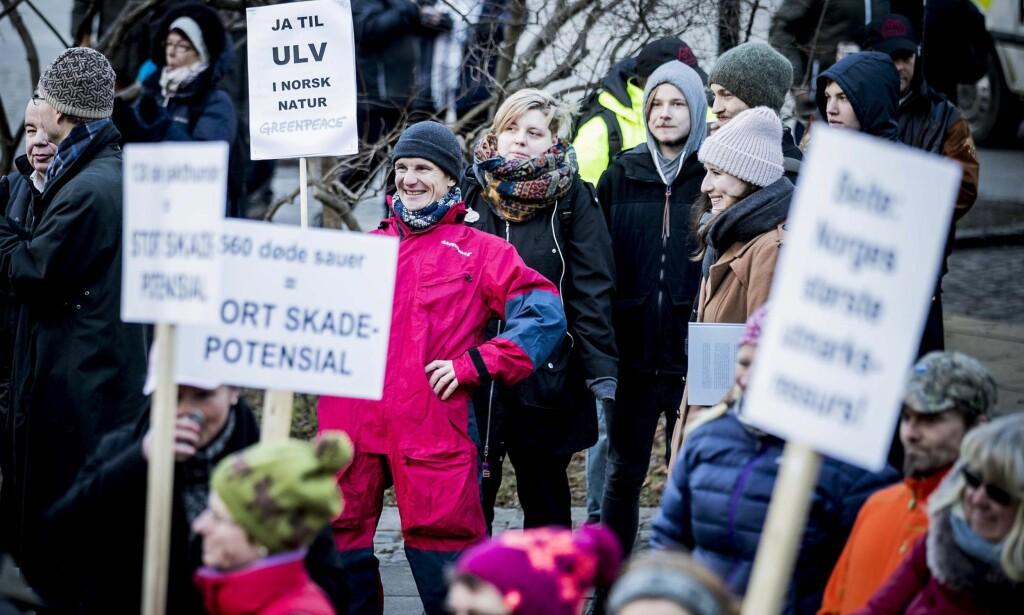 "ENSOM ULV: Frontene er steile i ulvdebatten. Truls Gulowsen fra Greenpeace var en ensom ulv blant ulvemotstandere under en demonstrasjon foran Stortinget i januar. &nbsp;<span style=""background-color: initial;"">Foto: Bjørn Langsem / Dagbladet</span>"