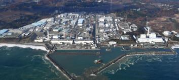 Første globale undersøkelse viser: Så mye stråling førte Fukushima-ulykken til
