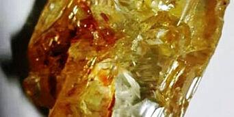 image: Pastor Emmanuel snublet over 706 karats diamant - trolig en av verdens største
