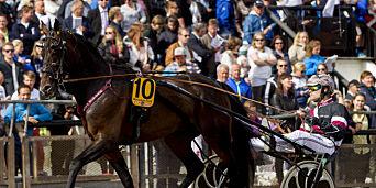 image: Hestefeber: 90 millioner i potten før rekord-V75