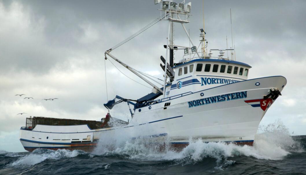 NORTHWESTERN: Krabbefiskebåten Northwestern er stasjonert i Seattle og fisker krabbe i Beringstredet. Foto: Discovery Channel