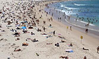 <strong>SKULLE HIT:</strong> Sydney, Australia. Dette bildet er av Bondi Beach. Foto: AFP / NTB Scanpix