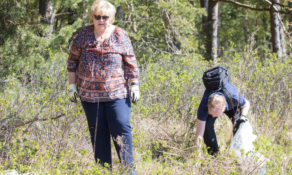 BOSS: Landets boss, statsminister Erna Solberg og ektemannen Sindre Finnes plukket boss fra bakken på øya Langåra i går. Foto: Audun Braastad / NTB scanpix