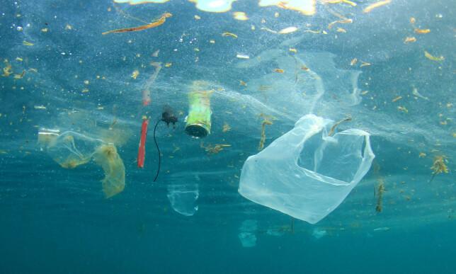 FORURENSNING: Plast brytes langsomt ned til mindre partikler, som kalles mikroplast. Denne prosessen kan ta flere hundre år, og miljøvernere frykter effekten dette kan ha på næringskjeden. Illustrasjonsfoto: Rich Carey / Shutterstock / NTB scanpix