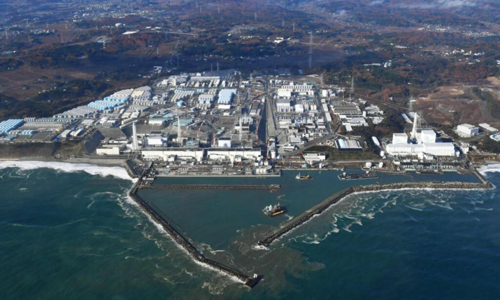 ATOMKATASTROFE: Kjernekraftverket Fukushima Daiichi i Japan ble i mars 2011 rammet av en tsunami som sørget for at det oppstod kjernefysisk nedsmelting i tre reaktorer. Foto: Kyodo News / AP / Scanpix