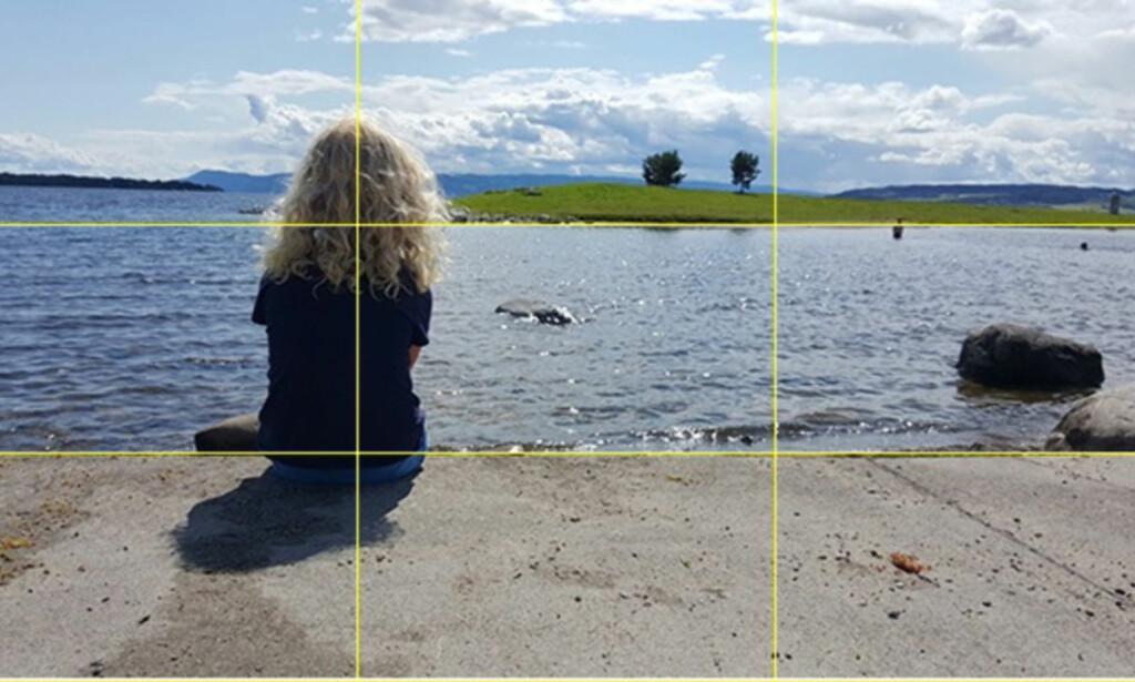 GOD HJELP: Rutenettet hjelper deg å holde kameraet i riktig vinkel og til å få bildene litt mer spennende. Foto: Pål Joakim Pollen