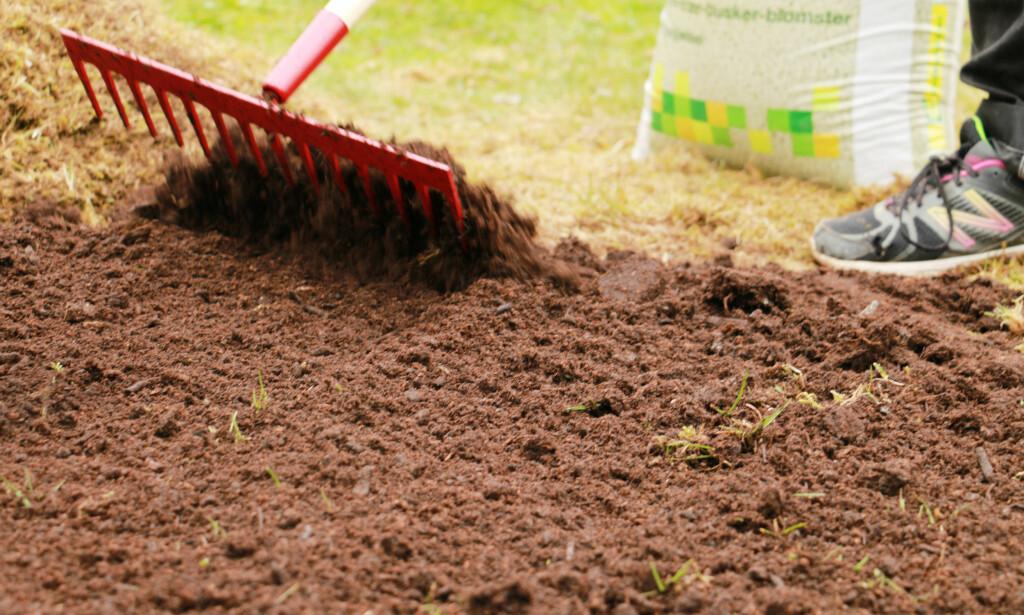 RIVE: En jernrive er et viktig redskap, som brukes til å jevne ut jorda med og å blande inn gjødsel. Foto: Berit B. Njarga