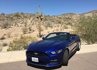 MYE NATUR: Kjører du Route 66 opplever du det meste av hva USA har å by på av natur, som her i ørkenen rundt Albuquerque i New Mexico. Foto: Tormod Brenna