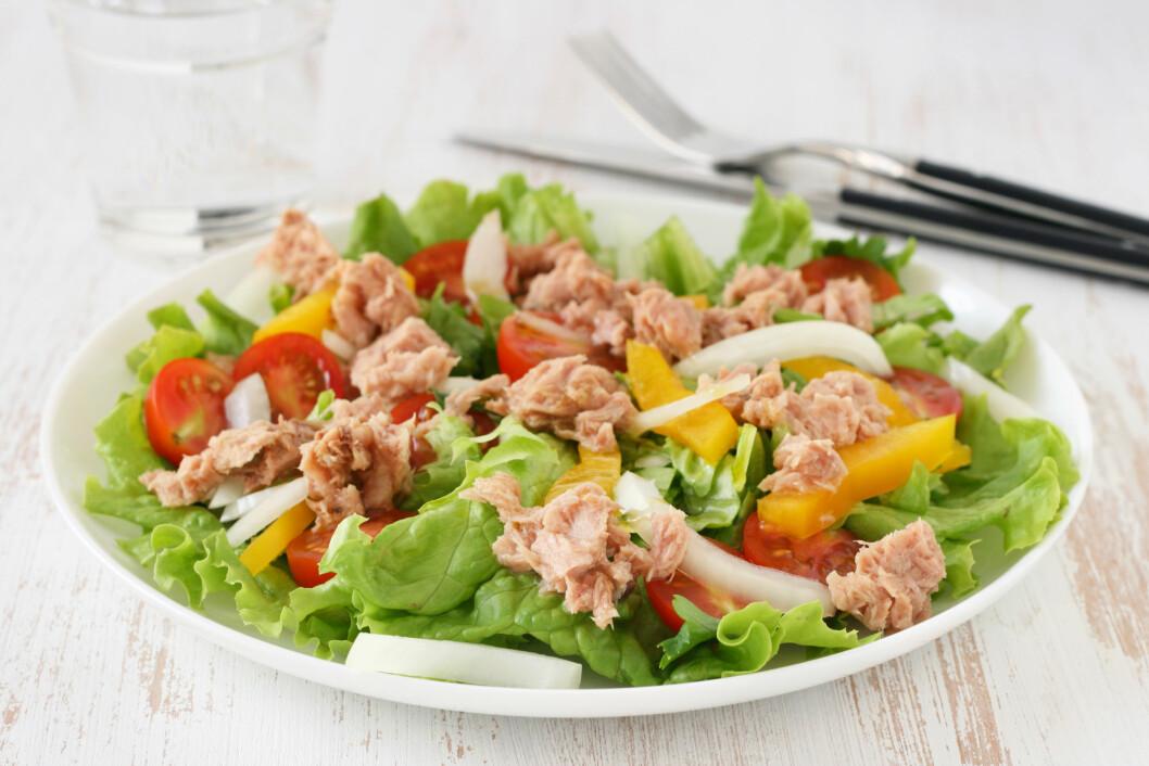 TUNFISKSALAT: Dersom du skal bruke tunfisken i en salat anbefaler von Krogh deg å velge den varianten som ligger i vann. Da får du i deg mest fisk med sunne fettsyrer og protein.  Foto: Shutterstock / Natalia Mylova