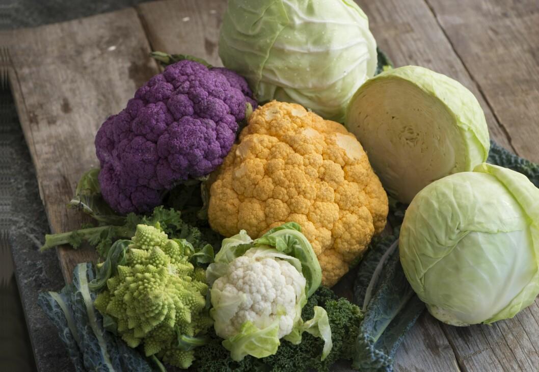 HOLDER DEG FRISK: Kål er en grønnsak med mye vitamin C, samt karotenoider, fenoler og glukosinolater som ansees for å være helsefremmende.  For eksempel er brokkoli rik på vitamin C, og også en kilde til vitamln K, B-vitaminer folat og kostfiber. Foto: Fredrik Sanberd/TT/Scanpix