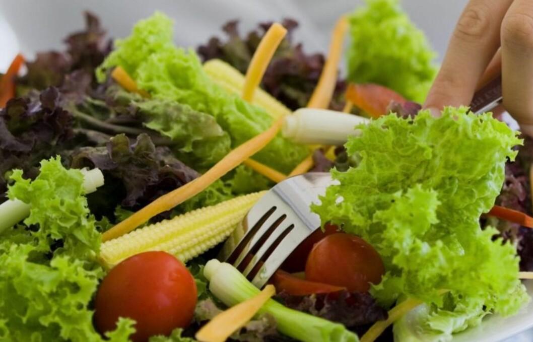 MYE SUNNERE: Å droppe kjøtt har en rekke gunstige helseeffekter. Foto: Getty Images/Pixland