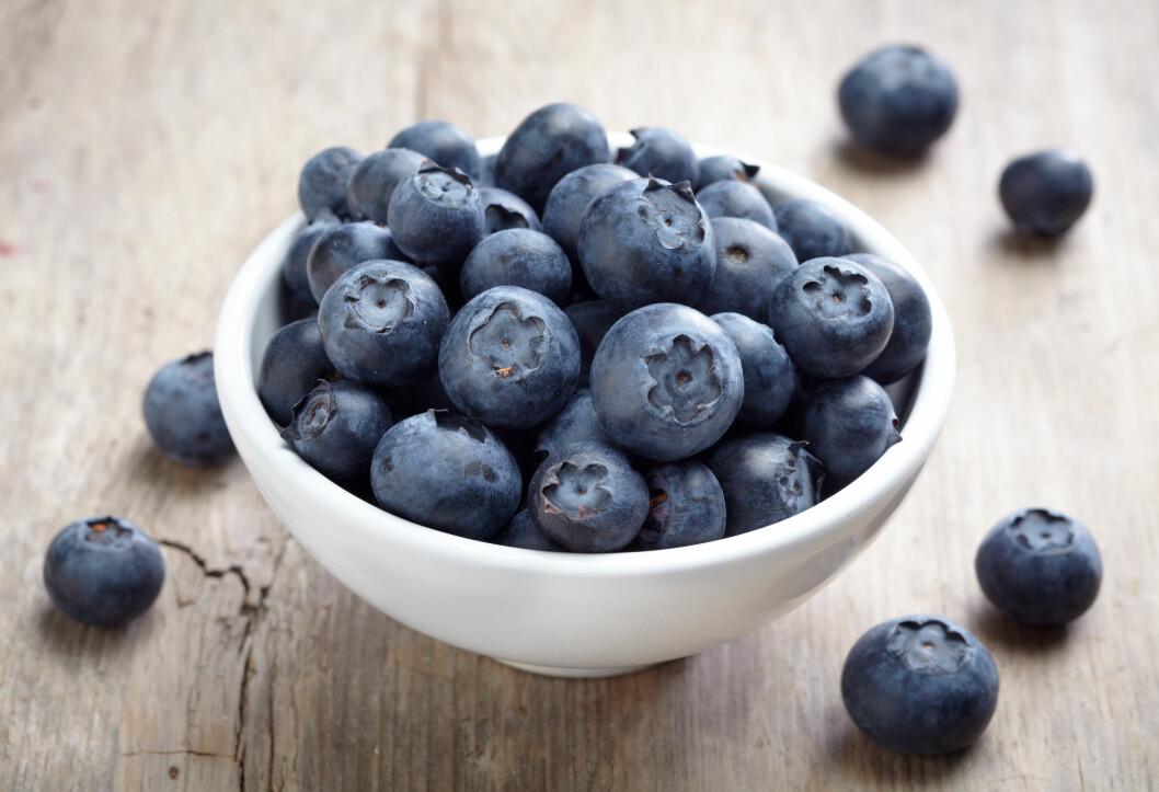 STORE BÆR: Har du lagt merke til at den ferske blåbæra i butikken er mye større enn den du finner i skogen? Det er fordi dette ikke er vanlige skogsblåbær, men amerikanske hageblåbær. Foto: Mara Zemgaliete - Fotolia