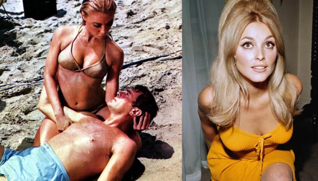 DREPT: Sharon Tate var en av Hollywoods store nykommere, og hadde allerede markert seg selv godt i bransjen med flere roller og modellkampanjer. Hun ble også kjent for sitt privatliv, og blant annet ekteskapet med regissør Roman Polanski. I 1969 ble hun drept, og saken er fortsatt en av verdens mest omtalte drapssaker. Foto: NTB Scanpix