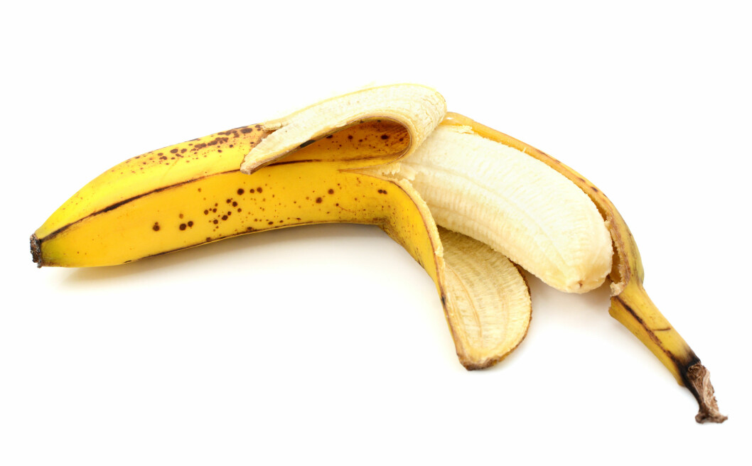 KJERRINGRÅD: Et velkjent kjerringråd er å gni et bananskall på vorten.  Foto: sarahdoow - Fotolia