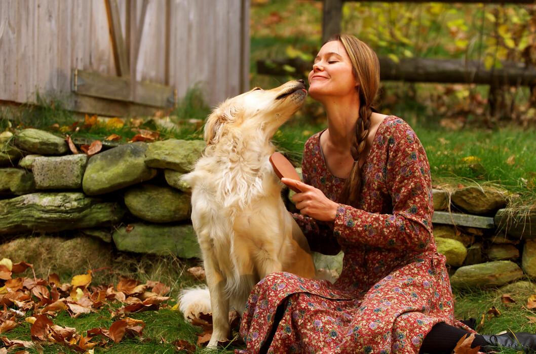 <strong>BAKTERIER:</strong> Lege Brynjulf Barexstein hevder at det å bli slikket i ansiktet av en hund i praksis er det samme som å «dyppe» egen munn eller ansikt ned i steder hvor hunden har vært. Foto: © Frank Siteman