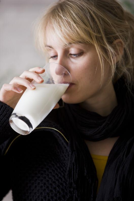 FOLKEDRIKK: I Norge drikker store deler av befolkningen melk hele livet. For enkelte kan det imidlertid bety magevondt og oppblåsthet.  Foto: Scanpix Denmark