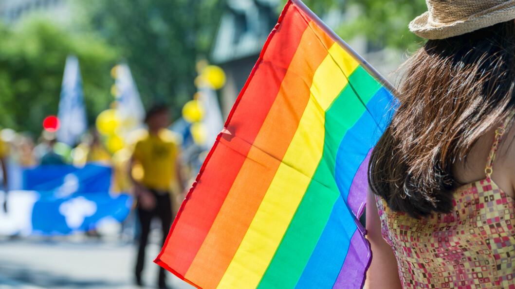 REGNBUEFLAGGET: Noen gang lurt på hvilken betydning regnbueflagget har? Foto: Shutterstock / Marc Bruxelle