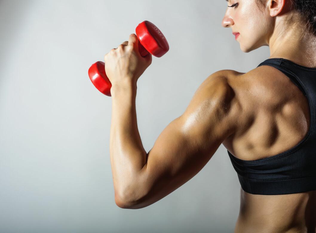 STYRKE: Når du trener styrke, trigger du musklene dine til å vokse.  Foto: Shutterstock / Artem Furman