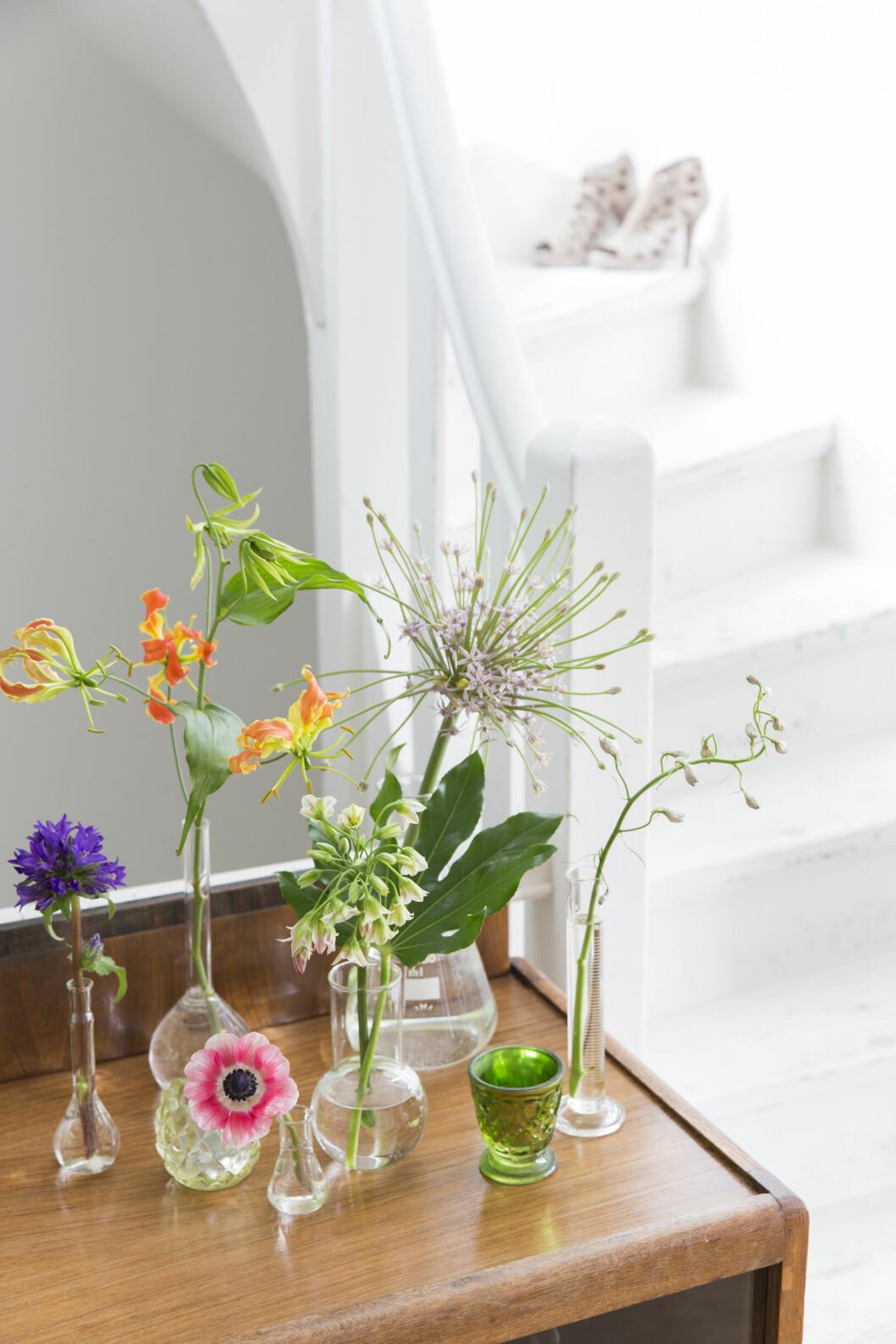 KREATIVE VASER: Den gamle skjenken er kjøpt brukt fra nettet, og på den står en samling med laboratorieglass, brukt som vaser, fra Brût Amsterdam.  Foto: Margriet Hoekstral