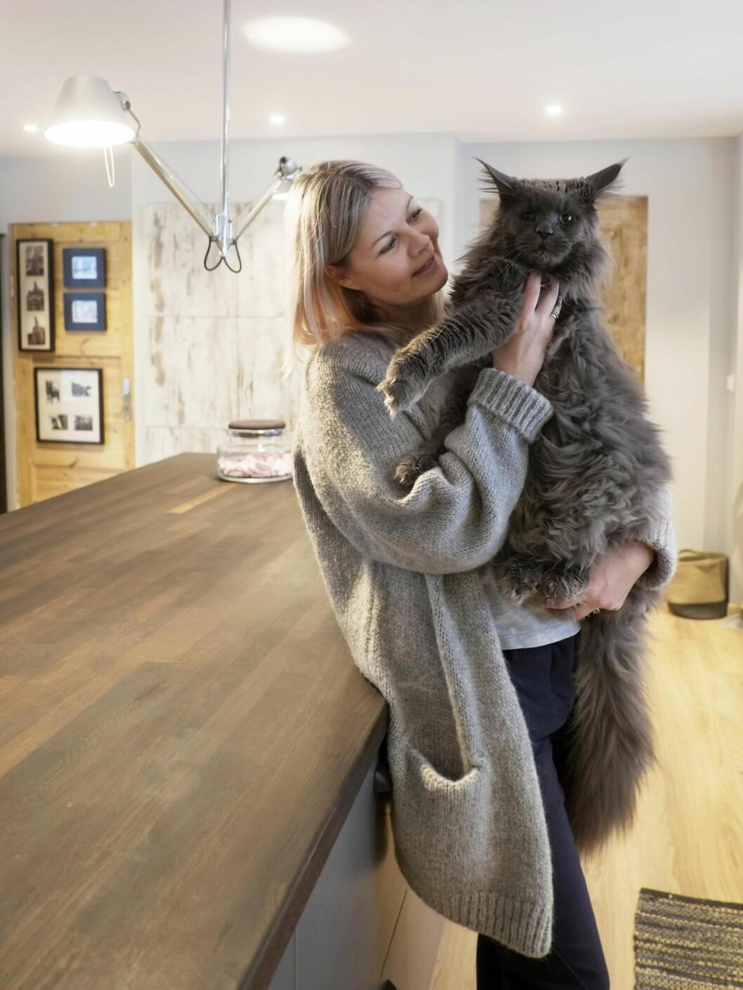 TIKILOS KATT: Katten Ulf er litt av en personlighet, og en av sjefene i huset.  Foto: Hege Landrø Johnsen
