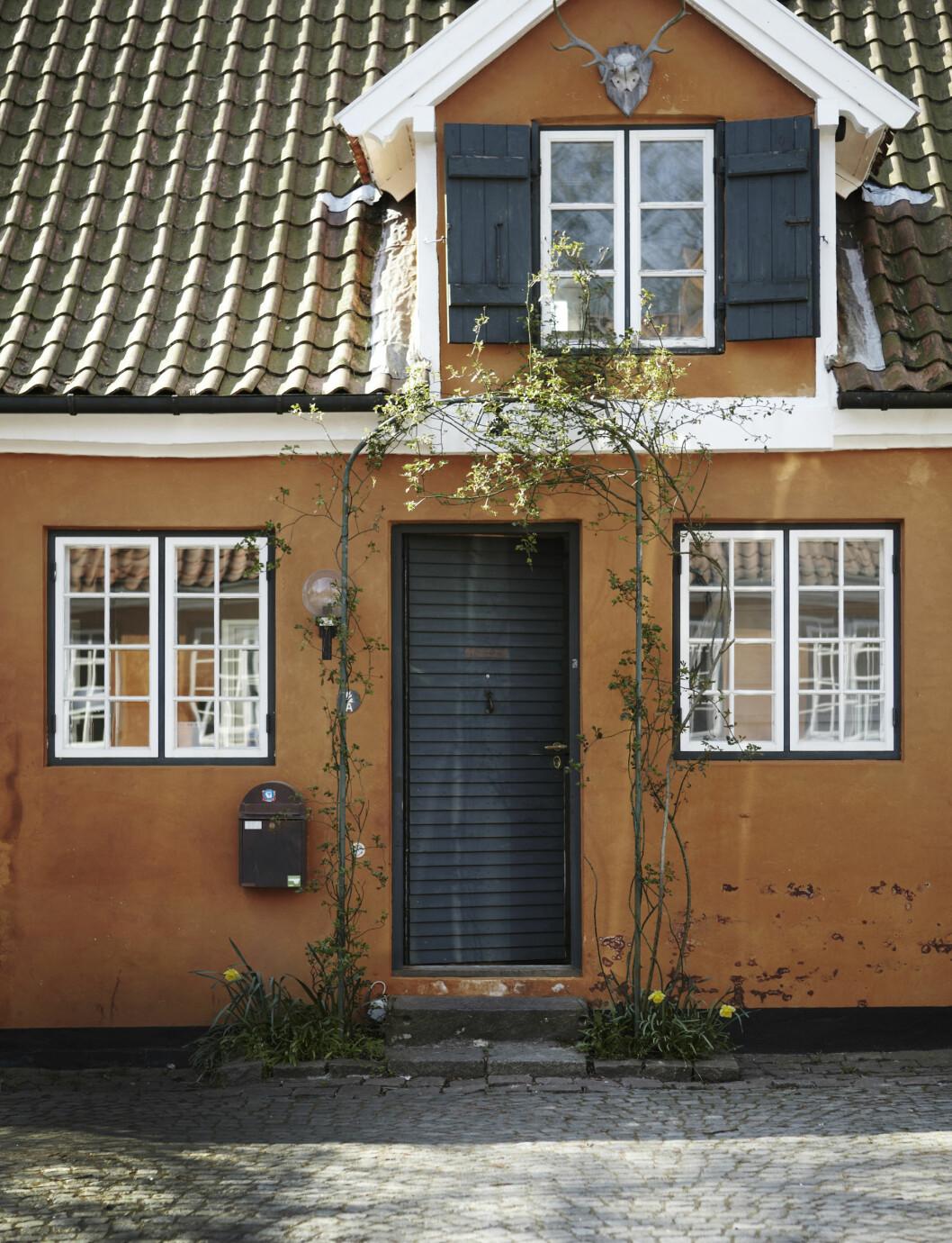 VAKRERE OG VAKRERE: Den sennepsgule murpussen har en slitt patina som bare blir vakrere med årene.   Foto: Kira Brandt/House of Pictures