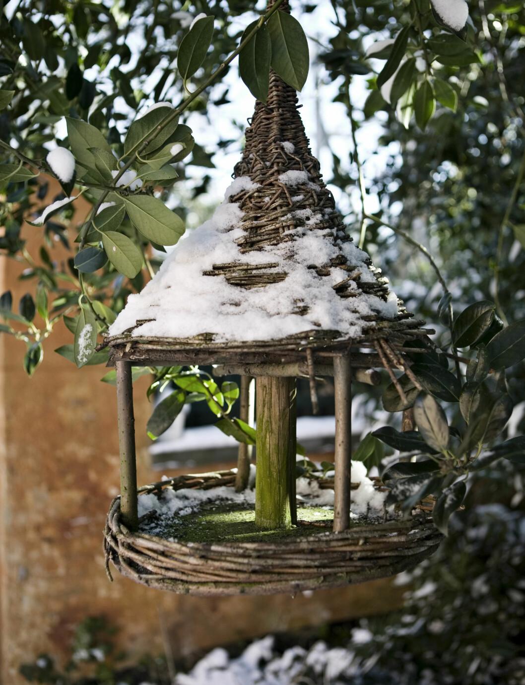 FUGLEHUS: Det lille fuglehuset fulgte med på huskjøpet.     Foto: Kira Brandt/House of Pictures