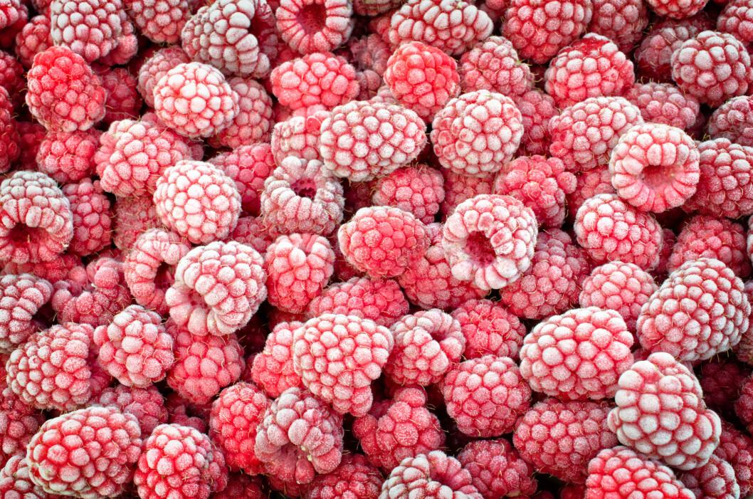 <strong>KAN BLI SYK AV FROSNE BÆR:</strong> Bær som er importert fra varmere land kan inneholde bakterier, parasitter og virus, og bør derfor kokes før bruk.  Foto: Shutterstock / Alesikka