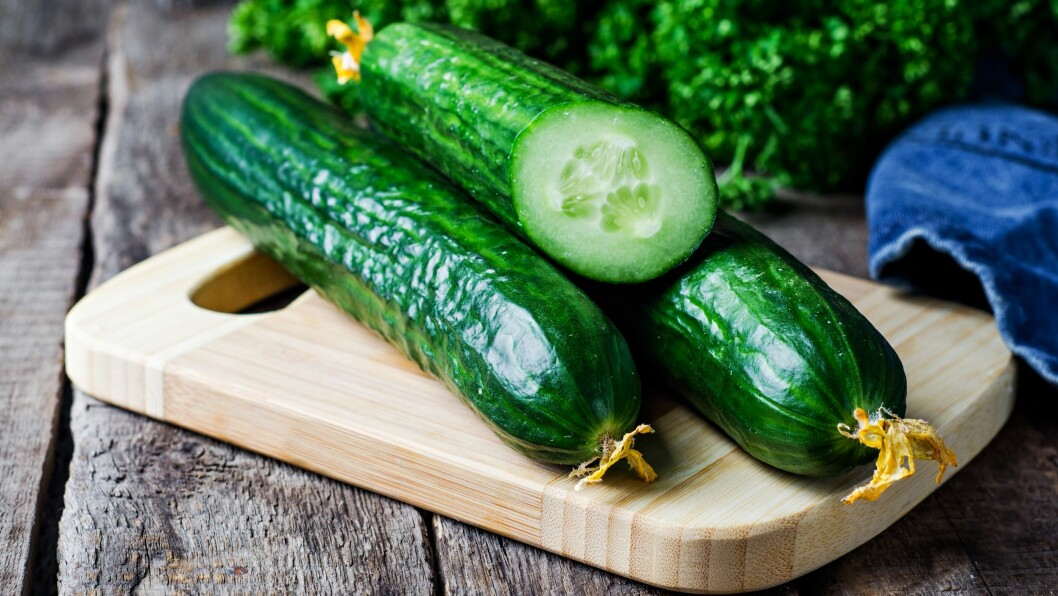 SKAL IKKE LIGGE FOR KALDT: Agurk, squash og artisjokk er grønnsaker som helst skal ligge fremme på kjøkkenbenken.  Foto: Scanpix