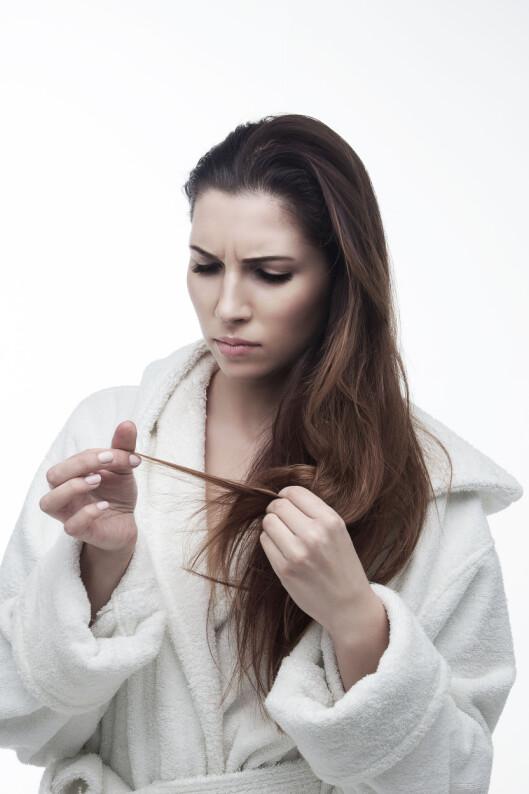 HAR FRISYREN LAGT SEG FEIL? Hvis du har lagt merke til at håret ikke er like lett å style, ikke faller like fint som det gjorde for noen uker siden, eller at tuppene er slitte, er det kanskje på tide med en hårklipp! Foto: Shutterstock / Remita