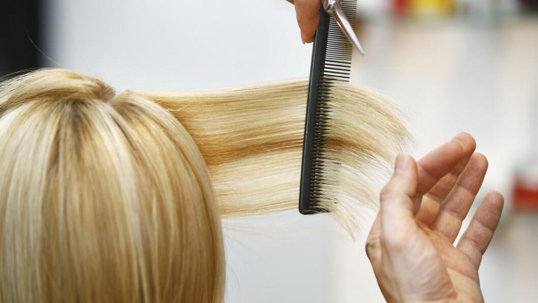 HÅRKLIPP: Det finnes flere tegn på at det er på tide å klippe håret. Vi har listet opp tre av dem og hva som sliter mest på håret. Foto: Nebojsa Markovic - Fotolia