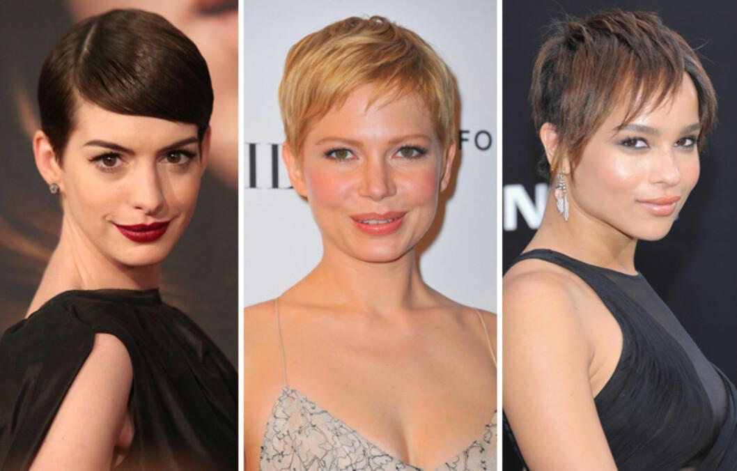 <strong>KORT OG GODT:</strong> Anne Hathaway (f.v.), Michelle Williams og Zoe Kravitz beviser at man slettes ikke trenger lange lokker for å se både feminin og sexy ut.  Foto: All Over Press