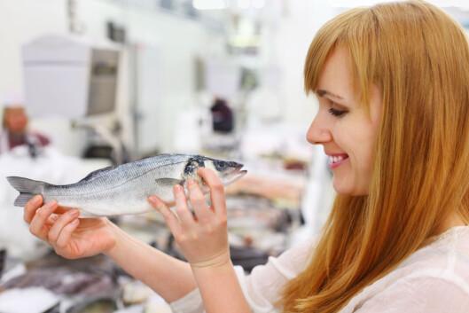 STUDER FISKEN: Se godt på fisken før du kjøper den og aldri kjøp fisk på butikken om mandagen - hvis du vil ha fersk fisk. Foto: Fotolia