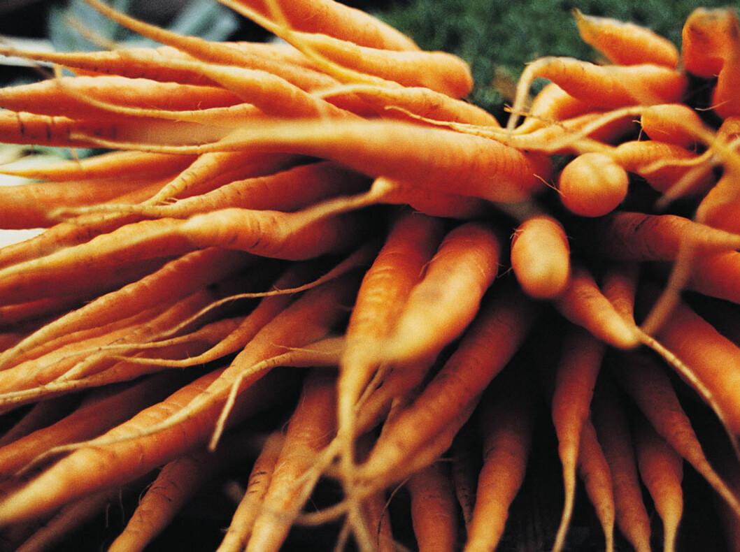 IKKE BARE KALORIFATTIG: Gulroten er rik på A-vitaminer, som bidrar til å styrke immunforsvaret. Dermed er du bedre rustet mot vinterens forkjølelser.  Foto: All Over Press