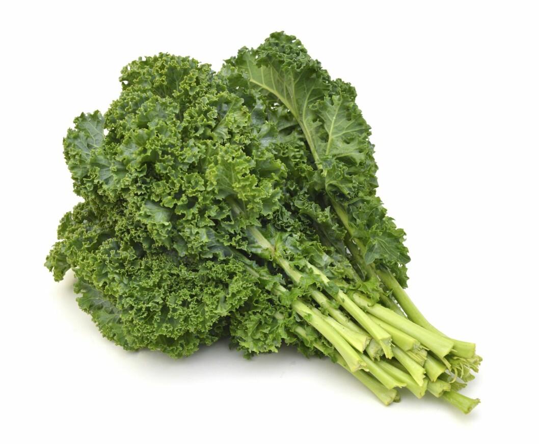 GRØNNKÅL: Grønnkålen er rangert som den sunneste grønnsaken av dem alle. Foto: Shutterstock
