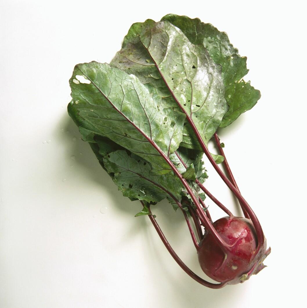RØD ELLER GRØNN: Slik kan den også se ut. Knutekålen fins både som grønn og rød, og begge dyrkes i Norge. Foto: StockFood