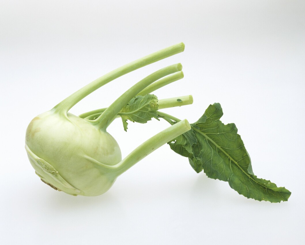 KNUTEKÅL: Foreløpig ganske sjelden på norske kjøkkenbenker, men ifølge The Daily Mail er knutekålen en supergrønnsak som inneholder svært mange gunstige næringsstoffer. Foto: StockFood