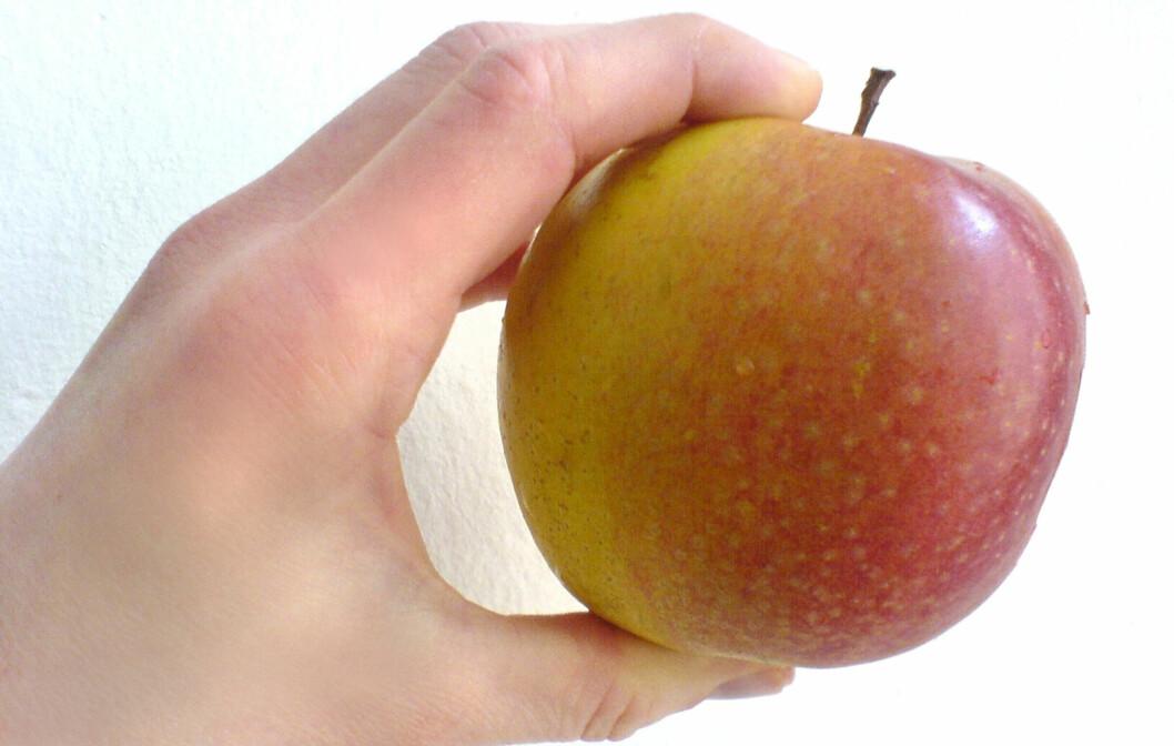 SUNT OG GODT: Epler er både godt og næringsrikt. Ny forskning viser også at ett av stoffene i skallet på eple kan fremme muskelvekst. Foto: Colourbox