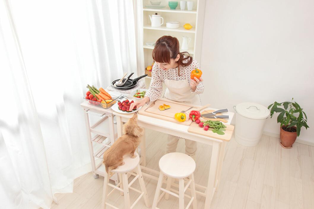 VÆR OBS: Slurv med renholdet, dårlig matsikkerhet og selskap av kjæledyr. Det er mye på kjøkkenet som kan gjøre deg syk. Foto: Shutterstock