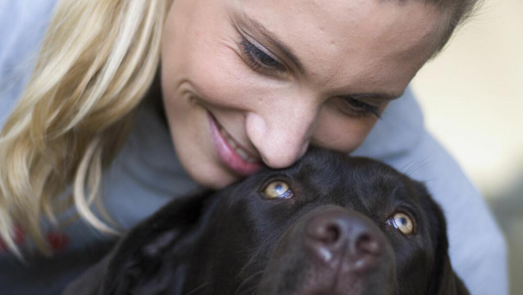 <strong>SUNN AV KJÆLEDYR:</strong> Flere studier viser at psykiske problemer kan bli mindre med hjelp fra dyr.  Foto: Plainpicture