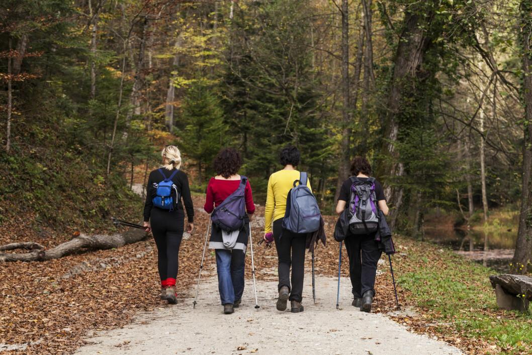 FÅ HJELP AV VENNER OG FAMILIE: Spør familien og venner om de kan hjelpe deg gjennom prosessen. Hva med gå turer sammen i skogen?  Foto: Deymos.HR - Fotolia