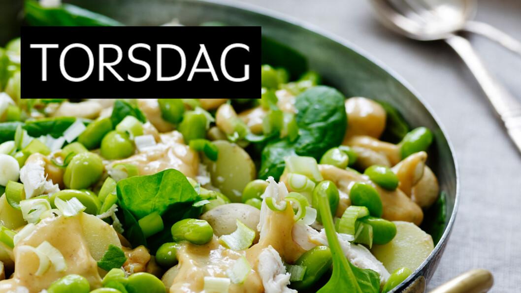 <strong>POTETSALAT MED KYLLING OG PEANØTT-CHILIDRESSING:</strong> En utradisjonell salat fylt med kylling, grønnsaker og potet. Dressingen er myk og kremete med en spennende smak. Foto: Henrik Freek Christensen