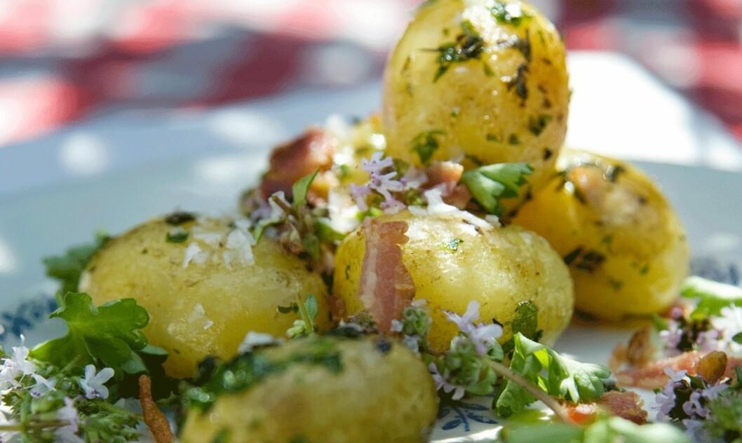 FRISKT OG GODT: Stekte poteter med bacon, timian og persille Foto: Lindberg Press