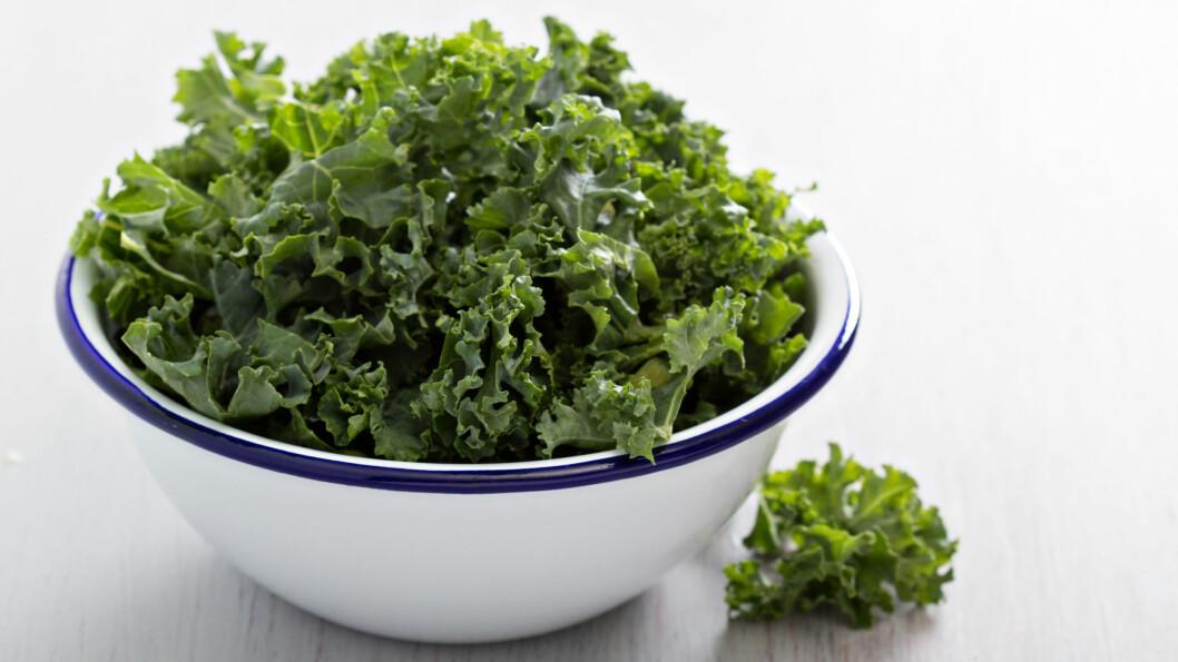 GRØNNKÅL: Det finnes knapt sunnere grønnsak, og den er faktisk ganske så anvendelig til middag. Lenger ned i artikkelen finner du flere forslag til hvordan du kan bruke grønnkål.  Foto: NTB Scanpix