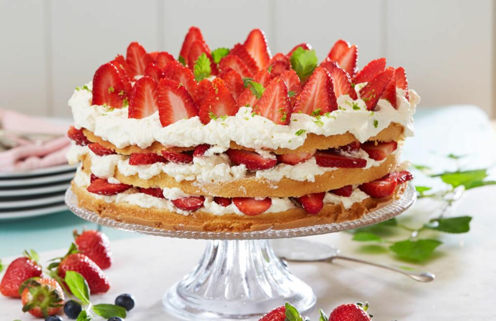 BLØTKAKE MED GLUTENFRI BUNN: Potetmel er helt glutenfritt, så et sukkerbrød bakt med potetmel er helt trygt å servere. Pynt kaken med krem og masse deilig jordbær. Foto: Synøve Dreyer